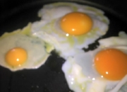 goose-and-chicken-egg_600x448