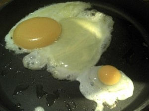 Fried emu and chicken egg